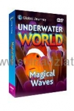 Magical Waves DVD